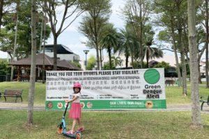 Dengue Fever Green Alert