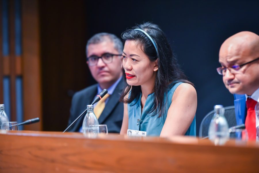 Speaking At The United Nations
