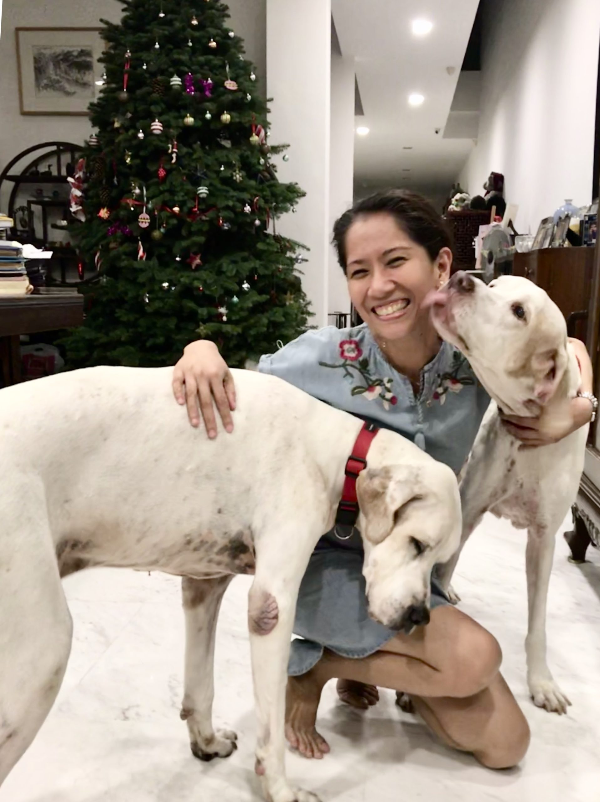Dr Shiela & Dog Dylan